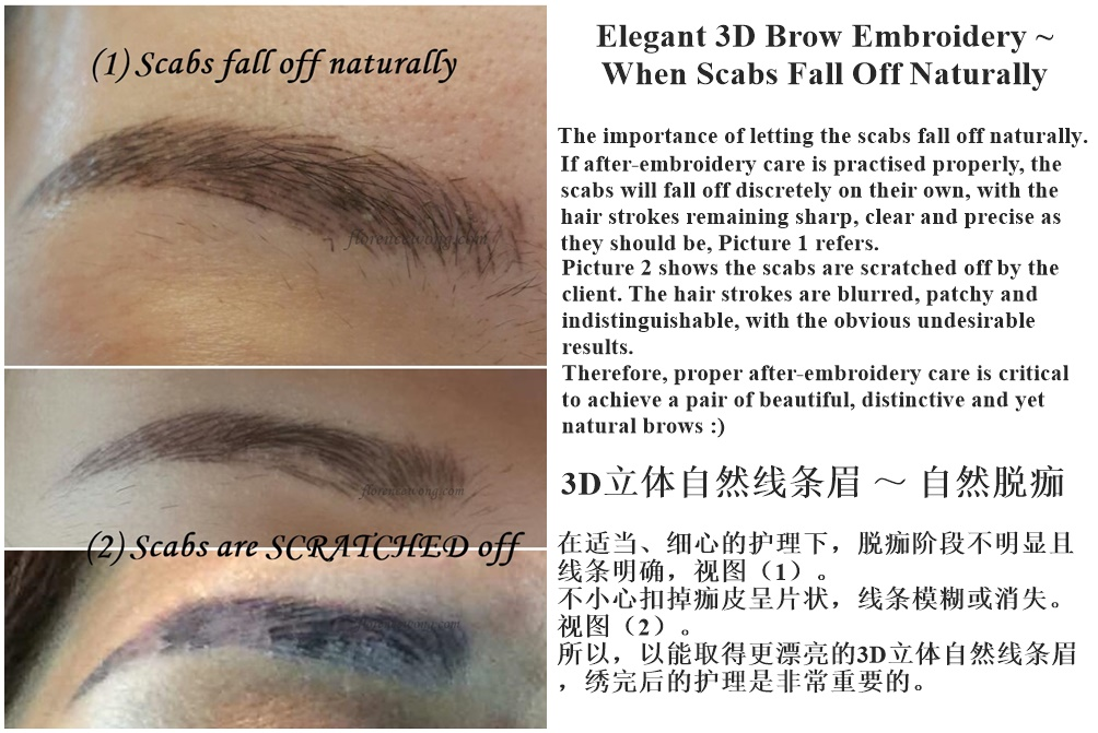 Elegant 3D Brow Embroidery ~ When Scabs Fall Off Naturally